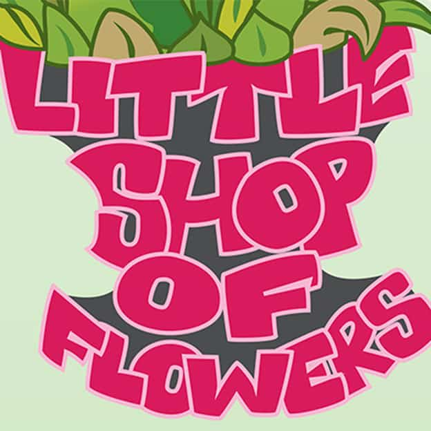 Little Shop of Flowers